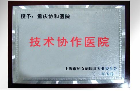 上海市妇女病康复专业委员会技术协作医院
